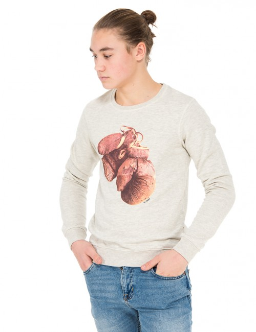 Scotch Shrunk Photoprint crewneck sweat Grå Tröjor/Cardigans till Kille