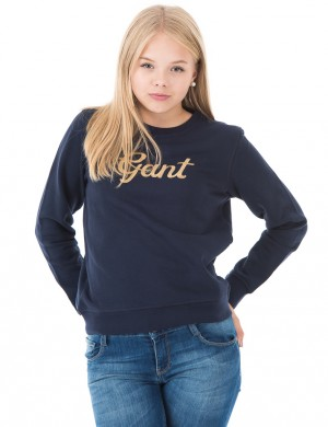O. GOLD GANT C-NECK SWEAT