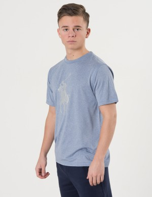 BIG POLO CREW NECK T-SHIRT