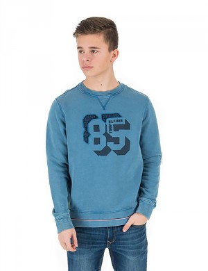 85 APPLIQUE CN HWK L/S